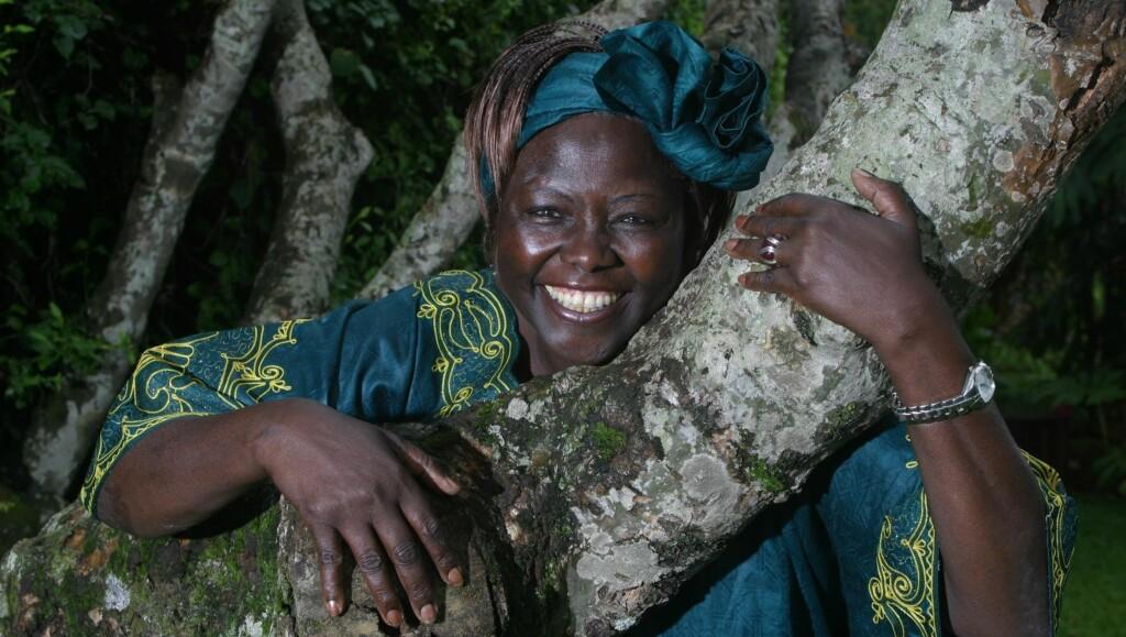 DØD: Wangari Maathai ble 71 år gammel. Foto: Stella Pictures