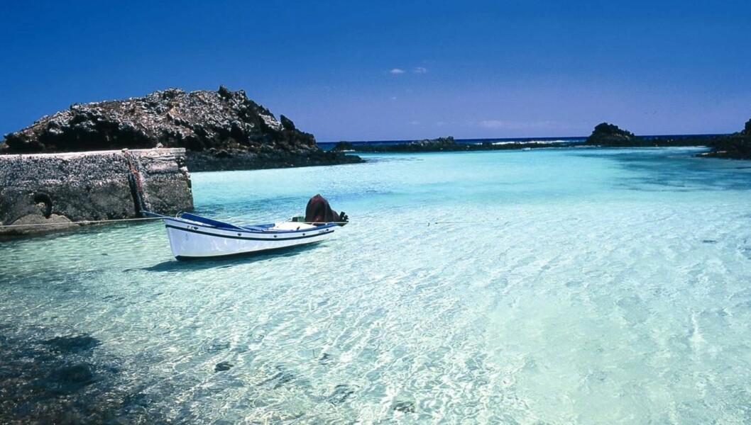 FORFRISKENDE OG UIMOTSTÅELIG: Spanske Isla de Lobos.