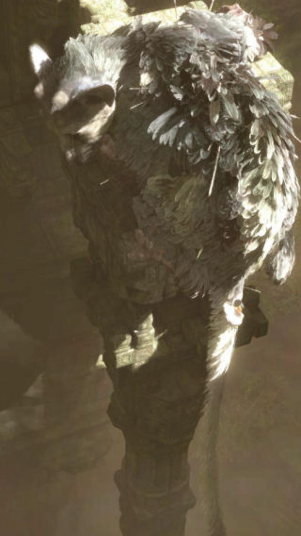 Fabeldyret i «The Last Guardian» ser ut som en blanding mellom fugl og katt.