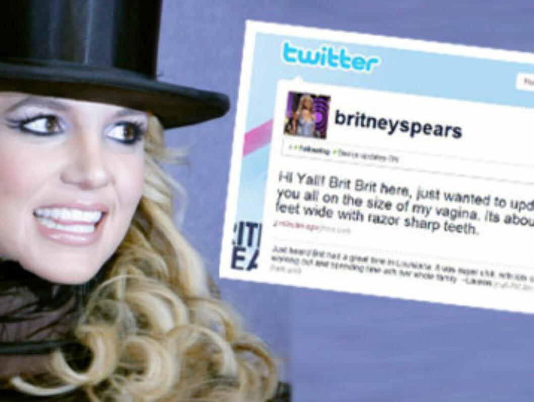 <strong>LUKRATIV AVTALE:</strong> Hvis Britney Spears noen gang takker ja til tilbudet, kan hun tjene store summer på sin twitring. Foto: Scanpix/montasje