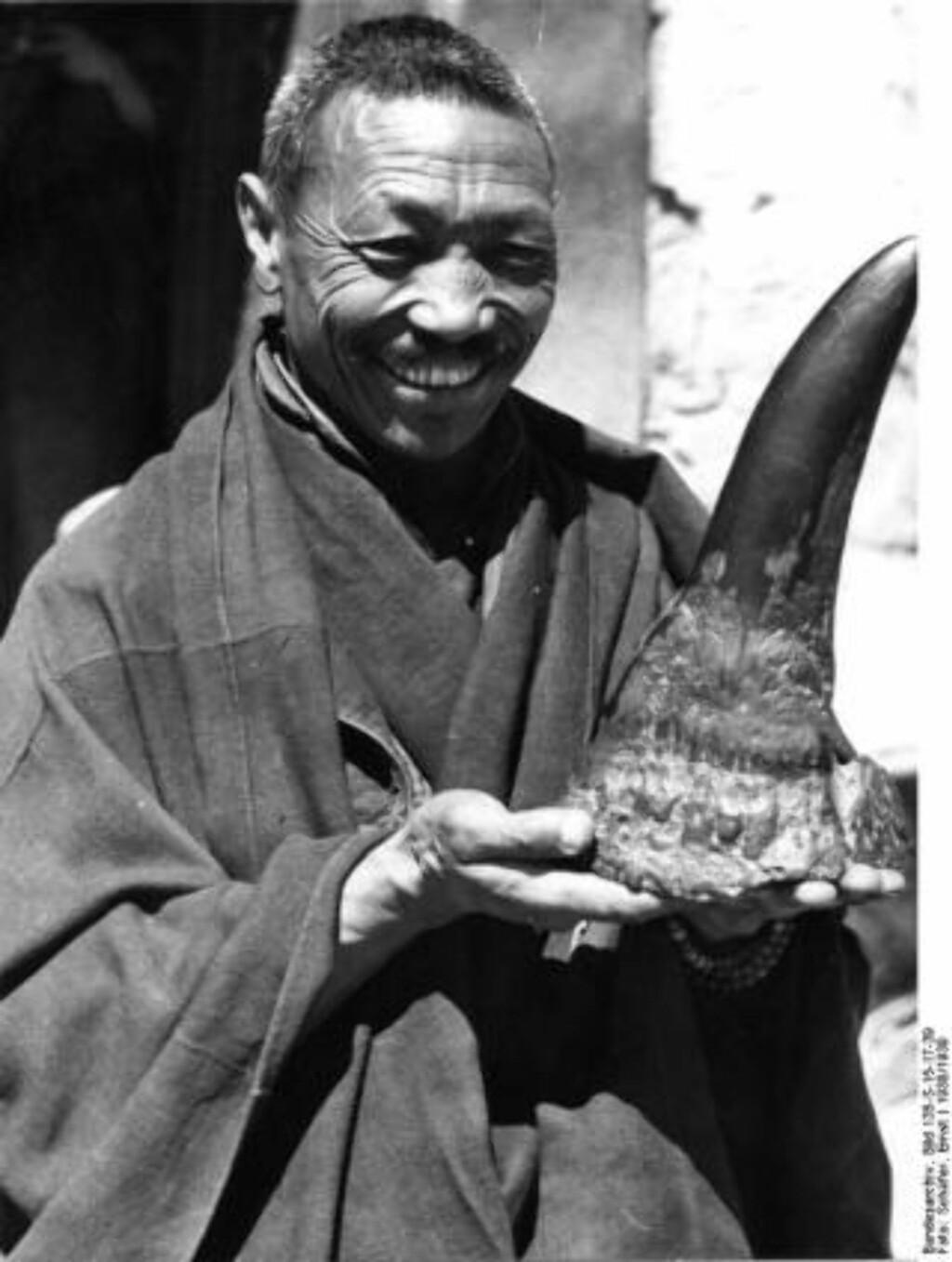 HØYT ANSETT: En tibetansk munk med et neshorn-horn, som er svært ettertraktet på de øst-asiatiske markedene. Foto: Ernst Schäfer/Det tyske riksarkiv/Wikicommons