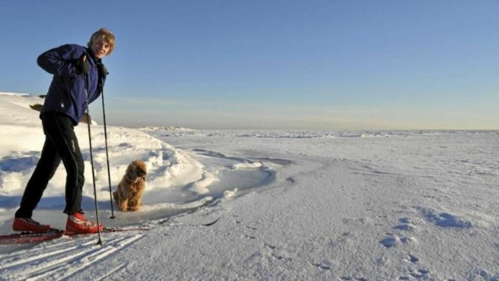 OSLOFJORDVIDDA: Bildet er ventet fra isen på vei ut til Fulehuk, men stemningen minner mye om Hardangervidda? Foto: Bjørn Tore Saltvik