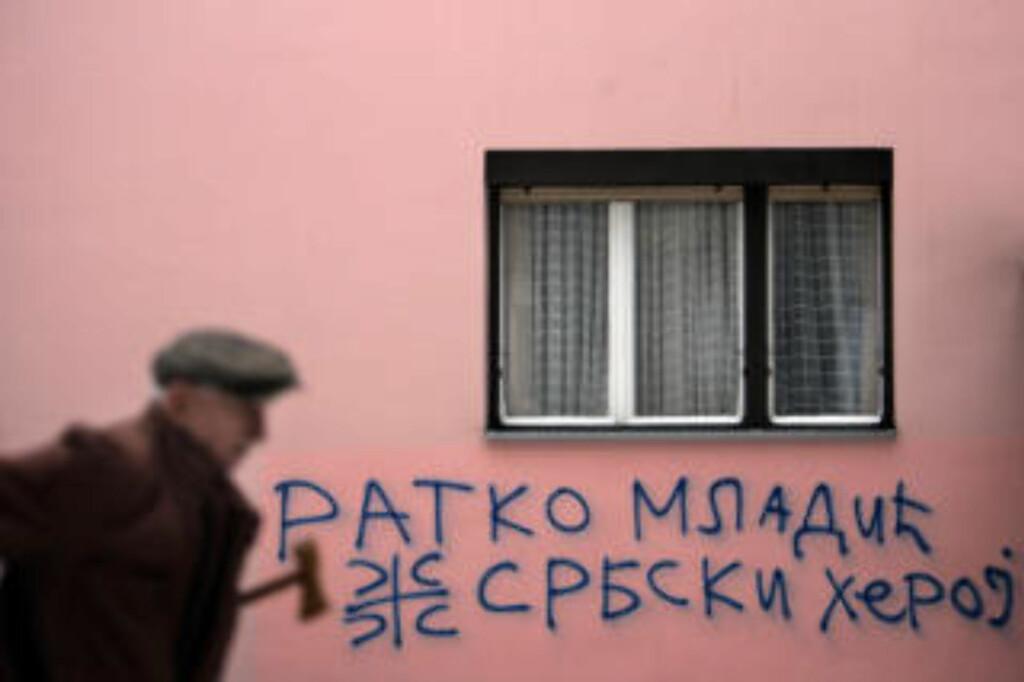 SERBISK HELT:  Ratko Mladic  har fortsatt høy status blant mange serbere. Her grafitti fra veggen på en boligblokk i Beograd, fotografert 15. februar i år: Ratko Mladic, en serbisk helt, er budskapet. FOTO: AP/SCANPIX.