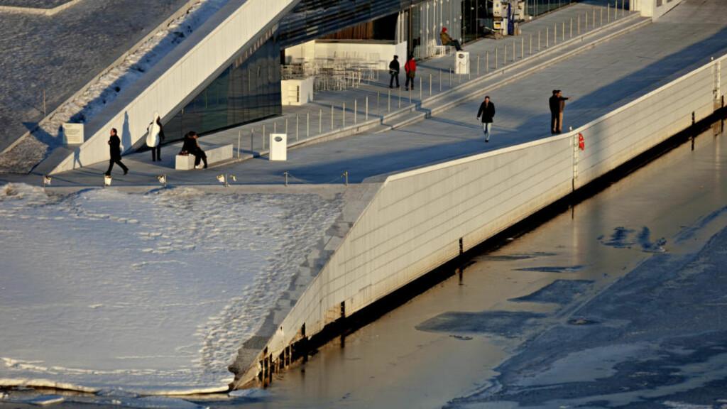 FLISER FLASSER AV: Flere av granittplater på operaens langside som vender ut mot havet har falt av. FOTO: LARS EIVIND BONES
