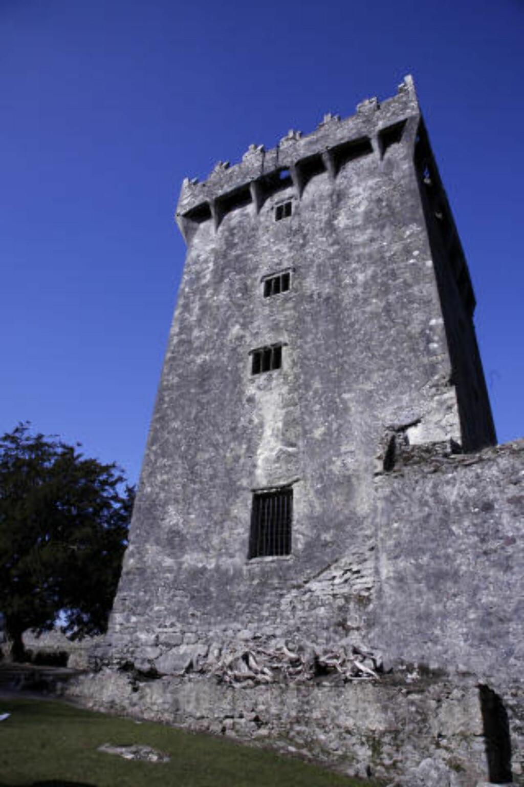 HØYT HENGER'N: Helt nederst på det øverste brystvernet på Barney Castle, 35 meter over bakken,  er det murt inn en spesiell stein som folk står i kø i timesvis for å kysse - hengende baklengs utover slottsmurene. Foto: Eivind Pedersen