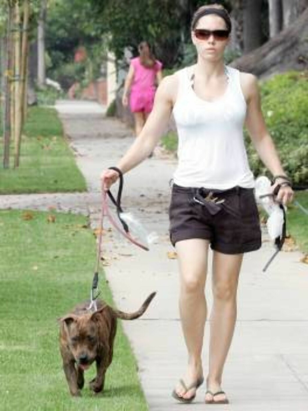 7th Heaven Jessica Biel walks her two dogs in Brentwood june 20, 2006 Foto: All Over Press