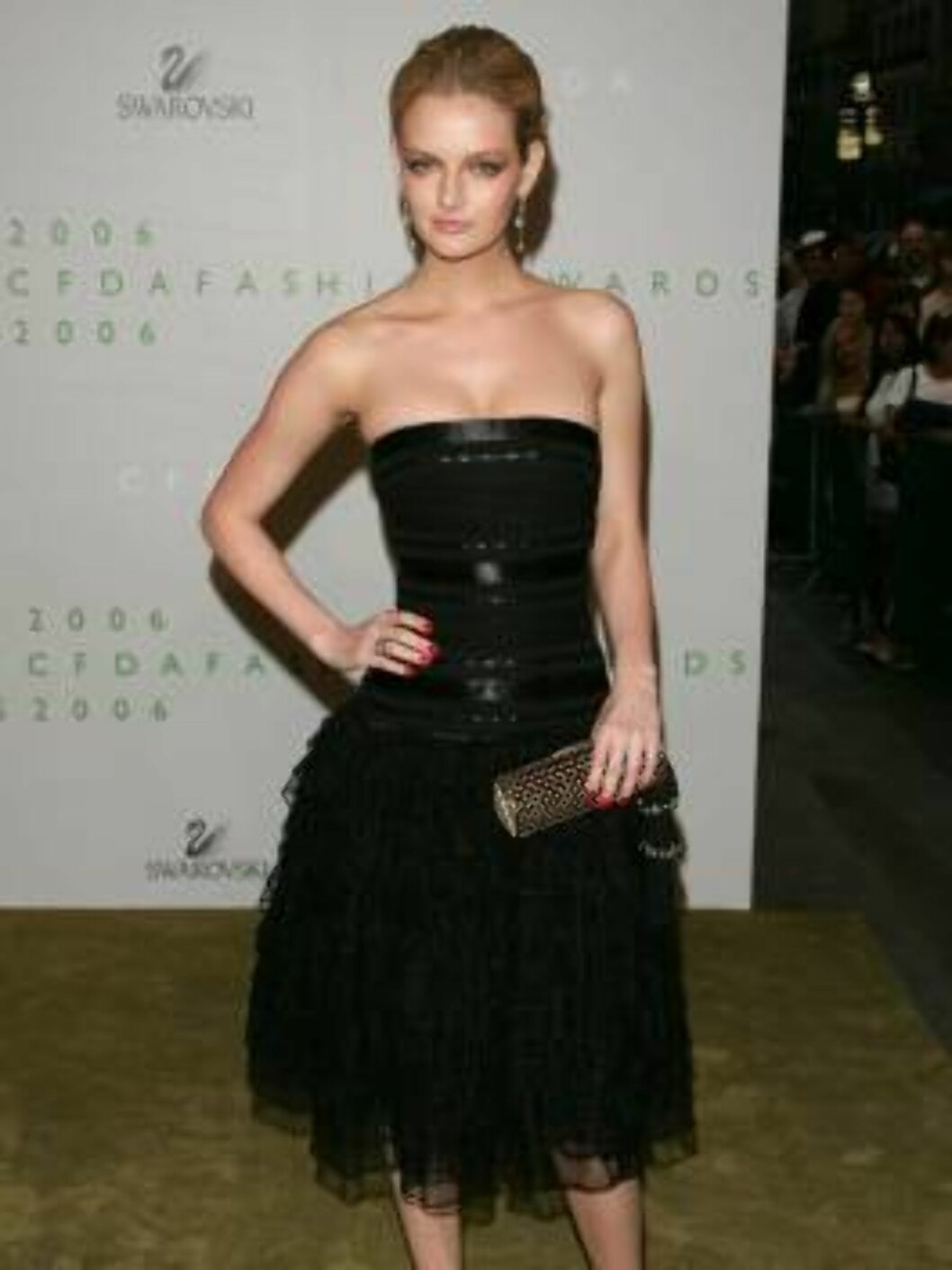 NEW YORK - JUNE 5:  Lydia Hearst attends the 2006 CFDA Awards at the New York Public Library on June 5, 2006 in New York City.  (Photo by Peter Kramer/Getty Images) *** Local Caption *** Name  * SPECIAL INSTRUCTIONS:  * *OBJECT NAME: 71124720KV329_2006_CF Foto: All Over Press