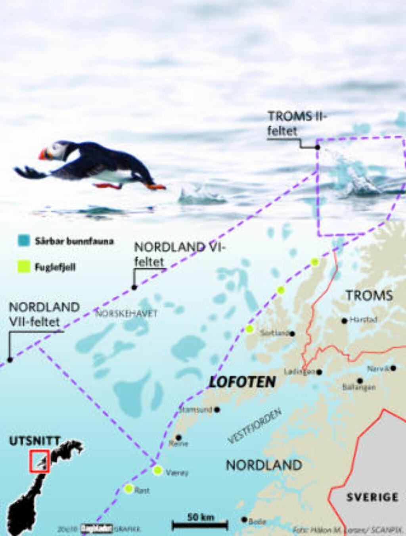 SÅRBAR NATUR: De blå markeringene viser Mareanos funn av sårbar bunnfauna i Nordland 7, og de grønne prikkene Seapops kartlegging av fuglefjell langs kysten av Troms og Nordland. Grafikk: Dagbladet.