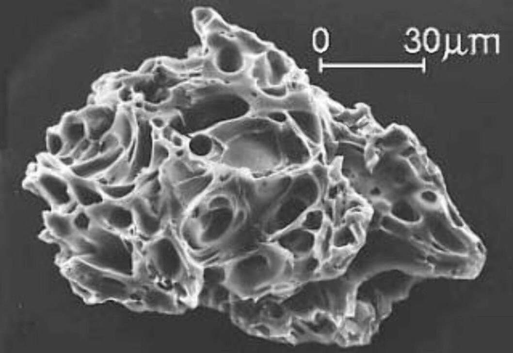<strong>FORTSTØRRET 200 GANGER:</strong> Vulkansk aske er harde og mikroskopiske glass- og mineralpartikler. De kan sveve lenge i høye luftlag og presentere en stor trussel mot flytrafikk. Foto: USGS