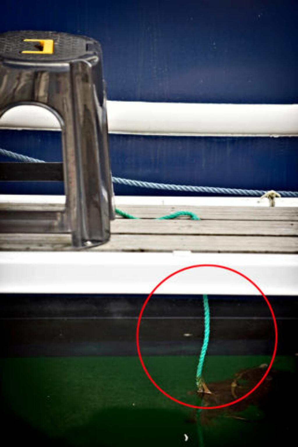 REDNINGEN:  Hell i uhellet: denne taustumpen hang ned mellom plankene i landgangen ved båten, der mannen lå hjelpeløs i det iskalde vannet. FOTO: NILS HARALD ÅNSTAD, SUNNMØRSPOSTEN.