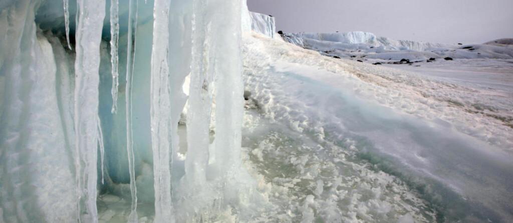 KRISEÅRET 2007: For to år siden var isoverflaten på Arktis omkring én million kvadratkilometer mindre enn i dag. Arkivfoto: SCANPIX