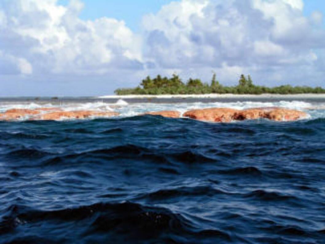<strong>SAMOA:</strong> Her traff tsunamien.