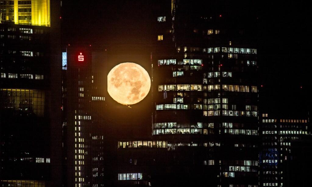 FRANKFURT: Månen mellom sentrumsbygningene i Frankfurt i Tyskland. Foto: EPA / NTB Scanpix