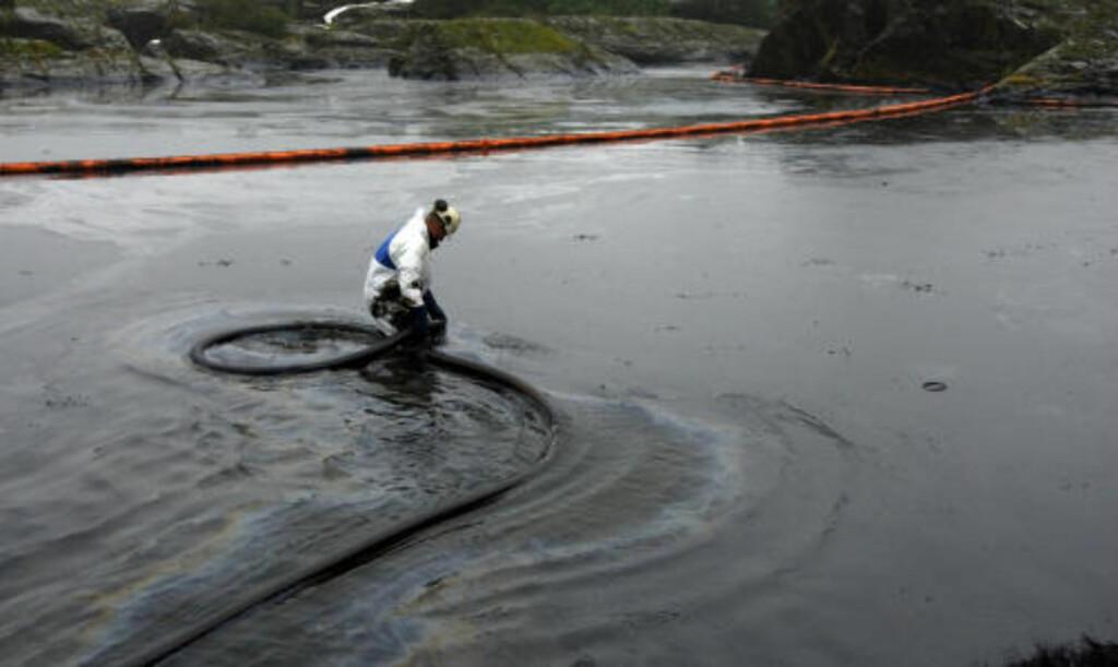 VANSKELIG JOBB:  En person forsøker å rydde oljesøl ved  Langesund Bad etter det havarerte skipet Full City. Foto: SCANPIX Foto: Cornelius Poppe / SCANPIX