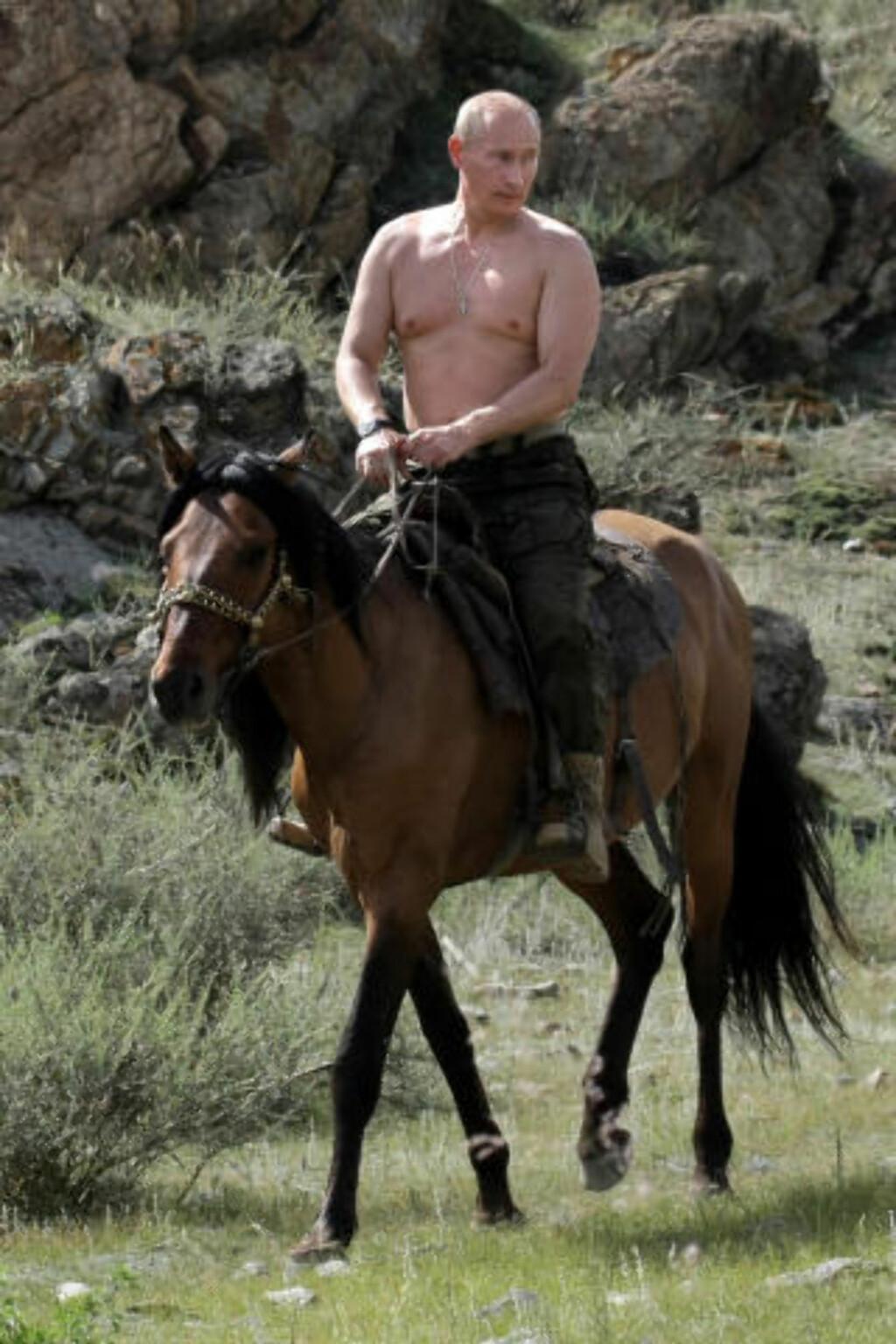 RIDENDE RYTTER: Vladimir Putin på hesteryggen i Sibir tidligere denne uka.  Foto: AFP PHOTO /RIA-NOVOSTI/ALEXEY DRUZHININ/SCANPIX
