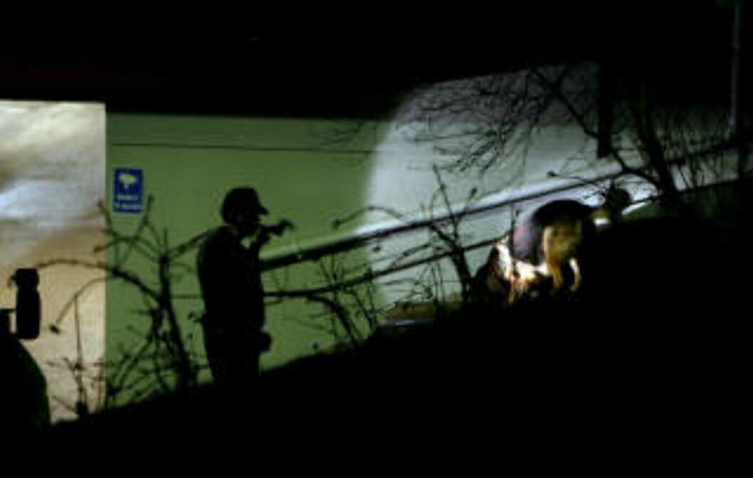 <strong>HUND:</strong> Politiet brukte torsdag kveld hund i letingen etter spor ved  garasjeanlegget på Skøyen i Oslo, der en 43 år gammel mann tidligere på dagen ble funnet død etter at han skal ha blitt knivstukket flere ganger. Foto: Erlend Aas / SCANPIX