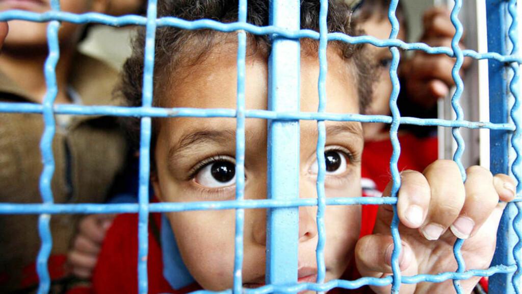 TILFLUKT: Tirsdag fortsatte den israelske bombingen av offisielle bygninger og Hamas-symboler i Gaza. Denne palestinske jenta søkte tilflukt med familien sin på en FN-skole i Rafah, sør på Gazastripa. Foto: Ibraheem Abu Mustafa/Reuters/Scanpix