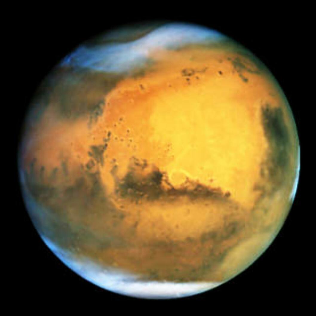 <strong>GÅTEFULL NABO:</strong> Mars, jordas ytre nabo i solsystemet, har i uminnelige tider vært gjenstand for fascinasjon. Foto: NASAS «HUBBLE»-TELESKOP/AP/SCANPIX