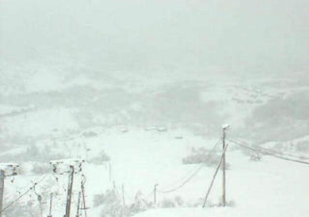 <strong>SNØRAS:</strong>  På Sauda gikk det i dag et stort snøras. Foto: Skjermdump fra webkamera fra Sauda Skisenter