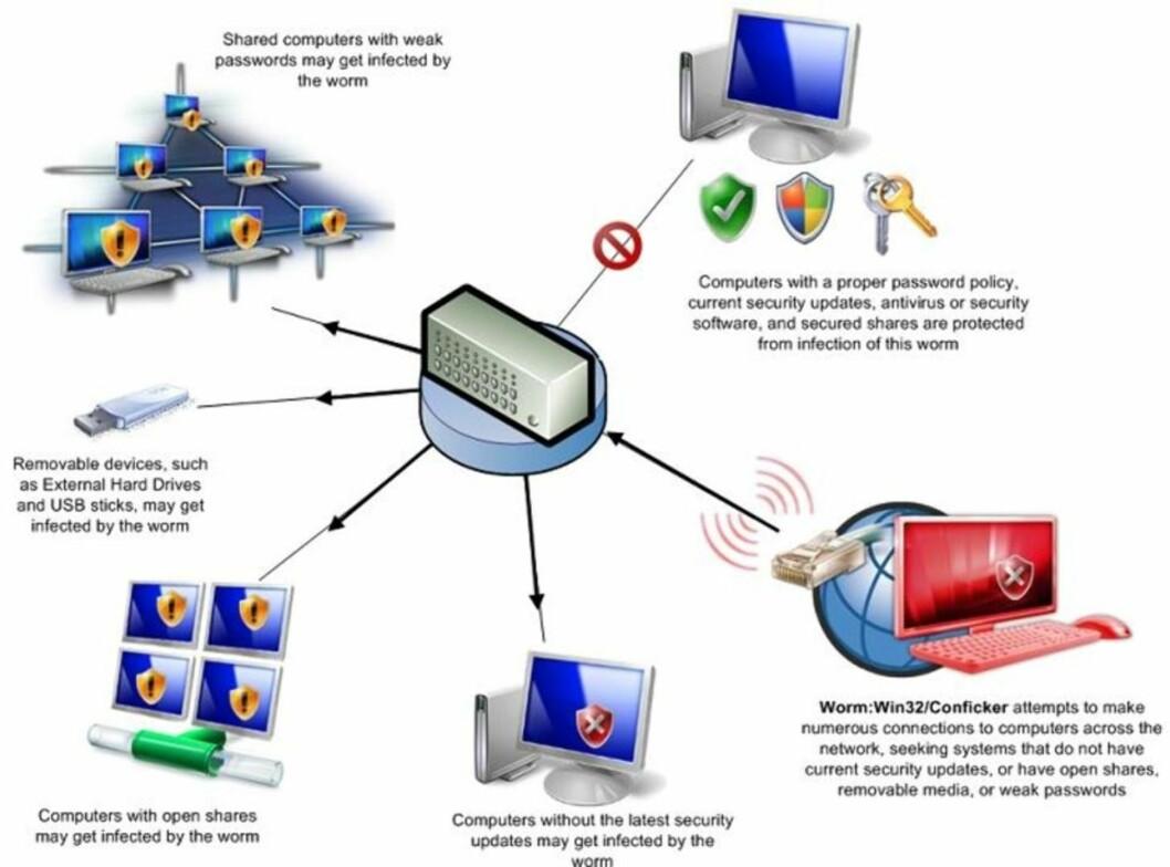 <strong>SLIK VIRKER ORMEN:</strong> Denne illustrasjonen fra Microsoft viser hvordan Conficker-ormen virker. Illustrasjon: MICROSOFT