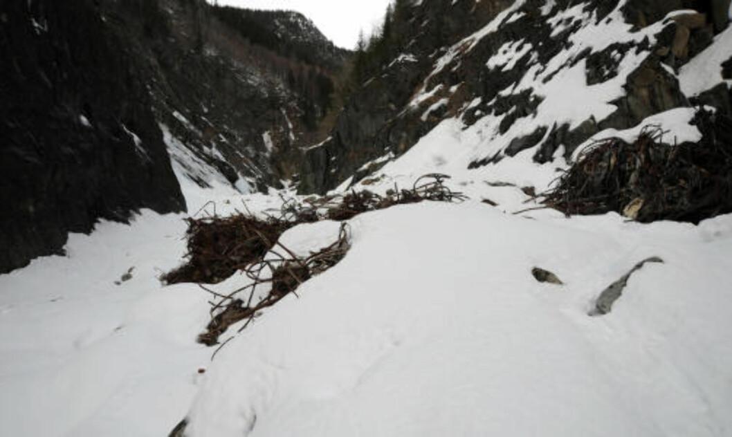 <strong> GAMLE SYNDER UNDER SNØEN:</strong> Søppelet dekker bredden av juvet og strekker seg 100 - 200 meter innover. Foto: Øistein Norum Monsen.