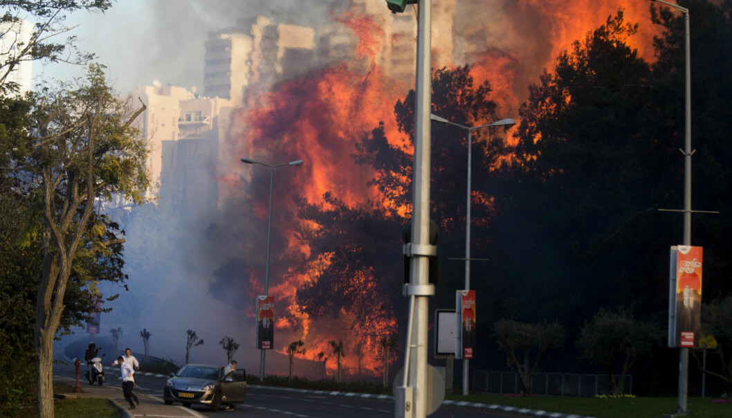 BRANNHERJET: Israelske myndigheter mener at så mange som halvparten av de 200 brannene som herjet landet torsdag, kan være påsatt. I storbyen Haifa tvang flammene mange mennesker på flukt. Foto: AP Photo / Ariel Schalit / NTB scanpix