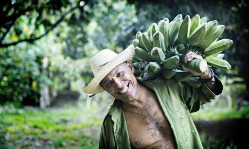 MATIMPORT: Mangel på kapital og teknologi gjør at landbruket har lav produktivitet. Cuba importerer 60-70 prosent av sitt matbehov. Her Emerito Lores som jobber på et landbrukskooperativ utenfor Havanna. Foto: Nina Hansen / Dagbladet