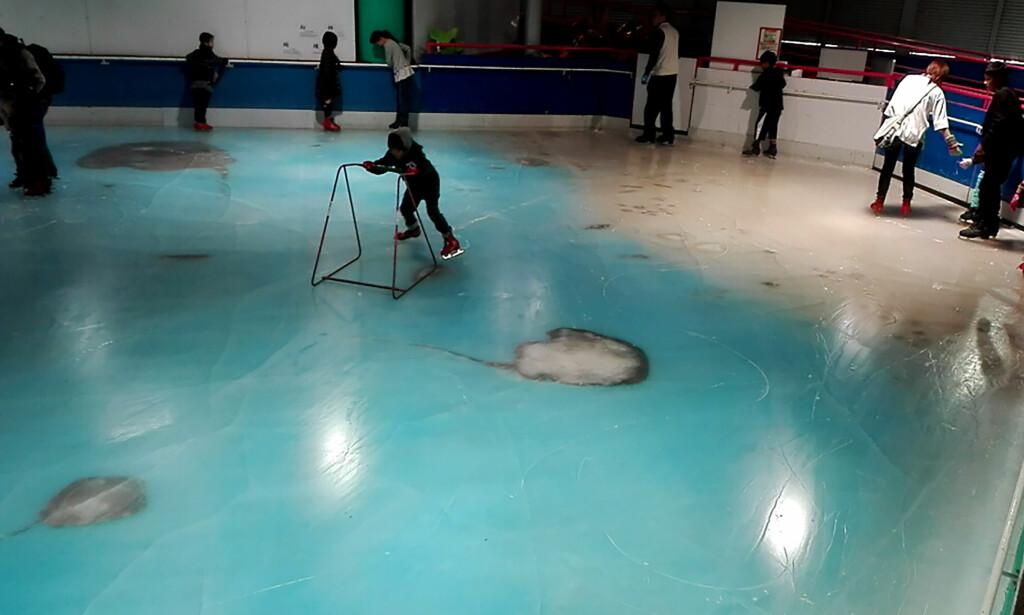 TVUNGET TIL Å STENGE: En japansk skøytebane som frøs ned 5.000 fisker i isen, har måttet stenge etter hissige reaksjoner. Foto: AFP PHOTO