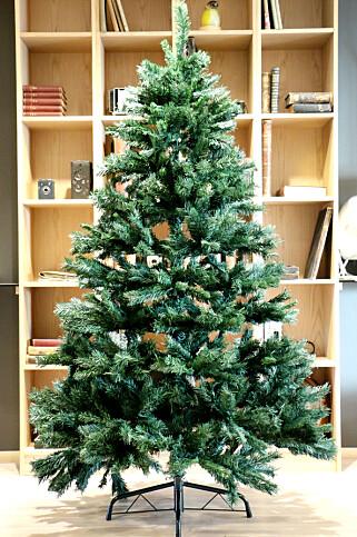 TETT OG FIN: Rusta-treet er pent når det kommer opp, men er ikke den mest praktiske konstruksjonen. Foto: Ole Petter Baugerød Stokke