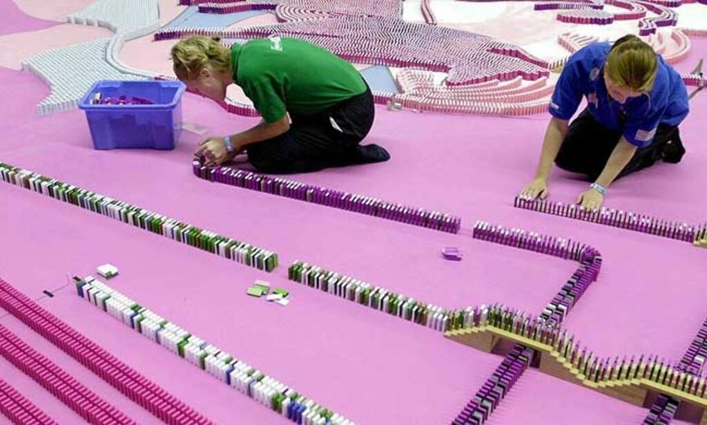 2001: Slik så det ut da nederlenderne ville ta verdensrekorden i Dominobygging i 2001. Siden har de hatt rekorden. Foto: EPA/ SCANPIX