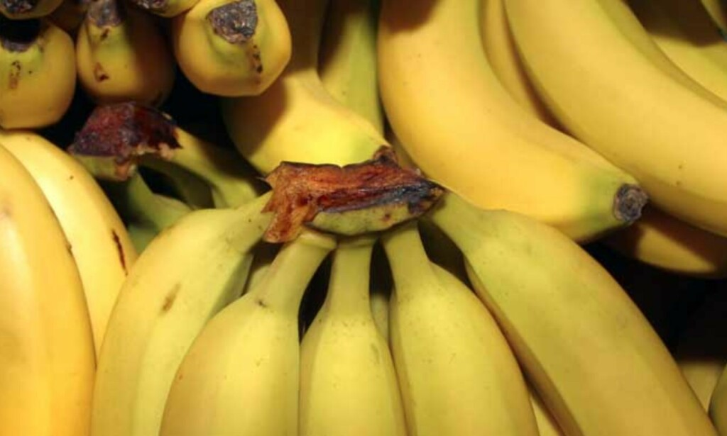BANAN-TERROR: Kvinnen løste opp sovemidler og bakte dem inn i en banankake hun deretter serverte sønnen. Illustrasjonsfoto Scanpix: