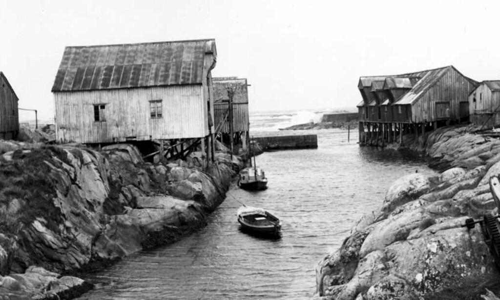 SKRIVER OM NAUST: Trine er en av januars utvalgte poeter. Her: Naust i fiskeværet Grip. Foto: Ivar Aaserud / Aktuell / SCANPIX