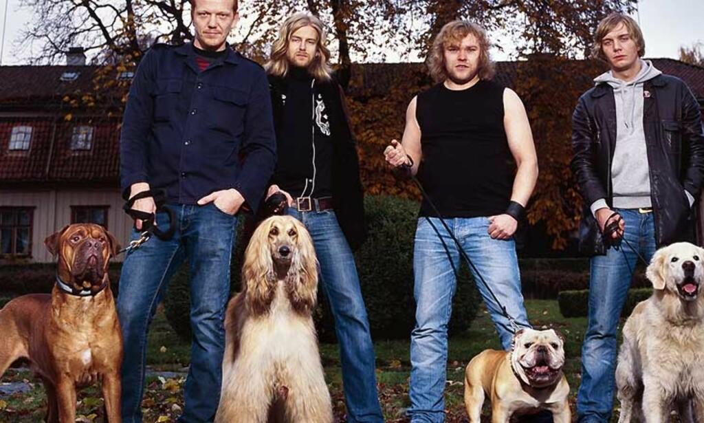 OSLOBAND: Brut Boogaloo er et mange band som bor privat under årets Bylarm. Foto: Brutboogaloo.com