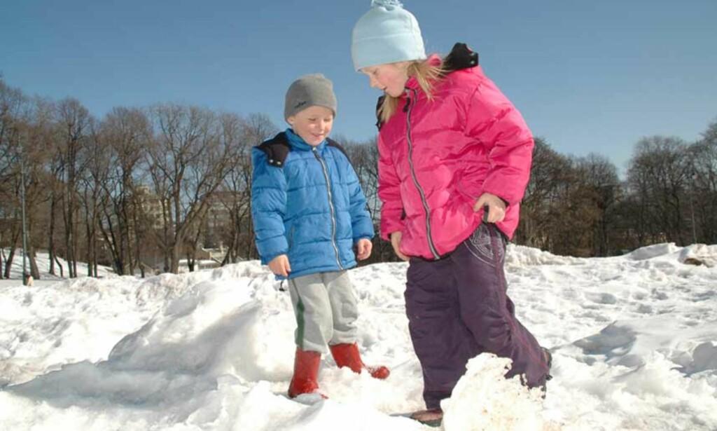 I SNØEN: Hvis barna spiser snø som er forurenset av hundeavføring, kan de få i seg parasitten Toxocara canis. Foto: Jeanette Pjaaka Hauge