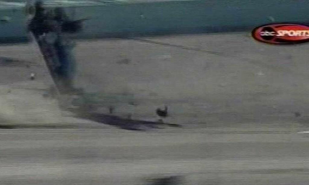 BREMSET IKKE: Paul Dana traff en bil som spant på banen i Florida. Alle foto: Scanpix/AP/ESPN/ABC Sports