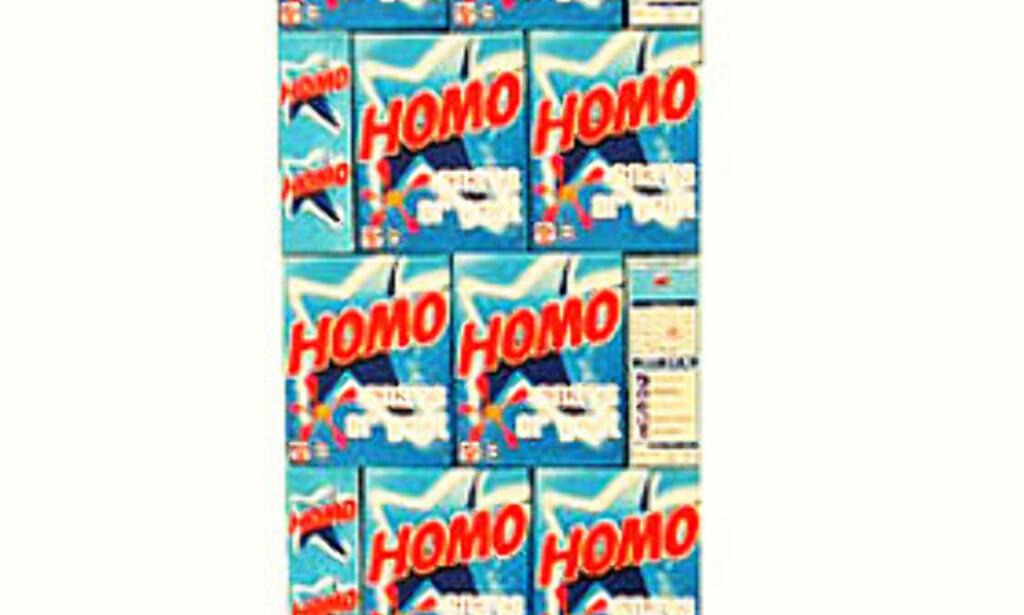 STRIDENS KJERNE: Flemming Roligheds fallosskulptur av 120 manipulerte Omo-pakker «som taler ut fra en homoseksuell avsender». Foto: Fra Flemming Roligheds hjemmeside