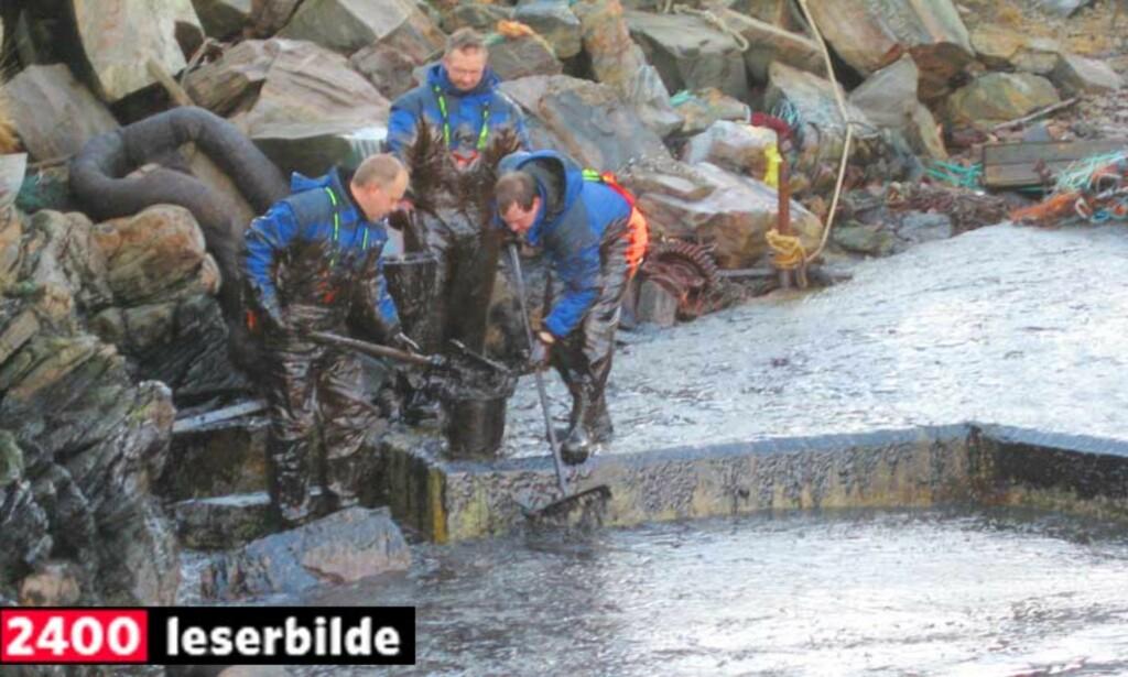 OPPRYDNINGSARBEID: Oljesøl i Øygarden kommune etter at M/S Server gikk på grunn fredag kveld. Foto: Karl-Magnus Tobiassen