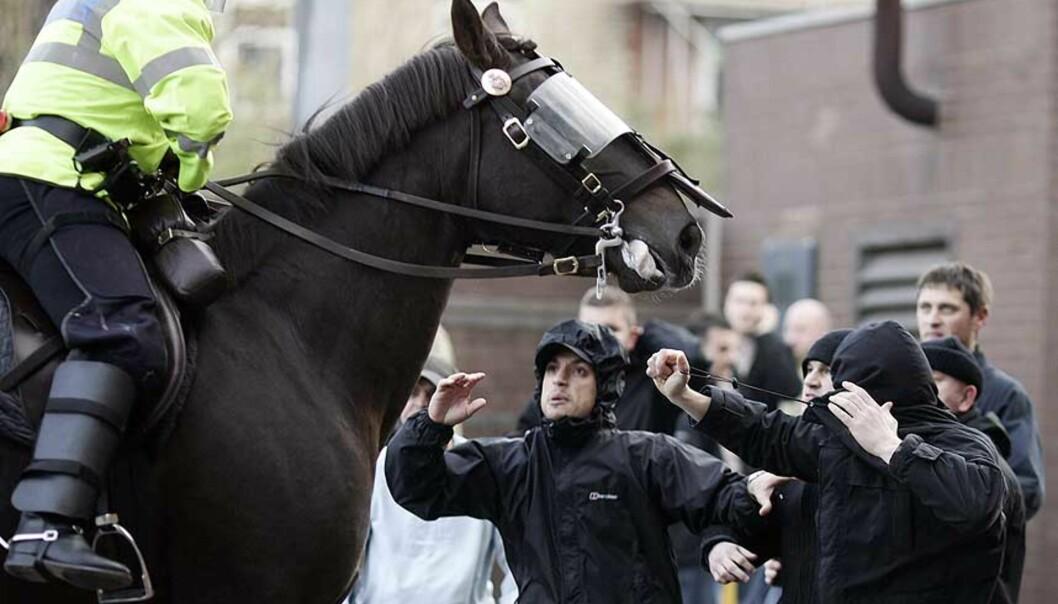 <strong><b>AGGESSJON:</strong></b> Det fotografen beskriver som Manchester United-fans, viser sinne mot en politimann til hest. Foto: Phil Noble/Reuters/Scanpix