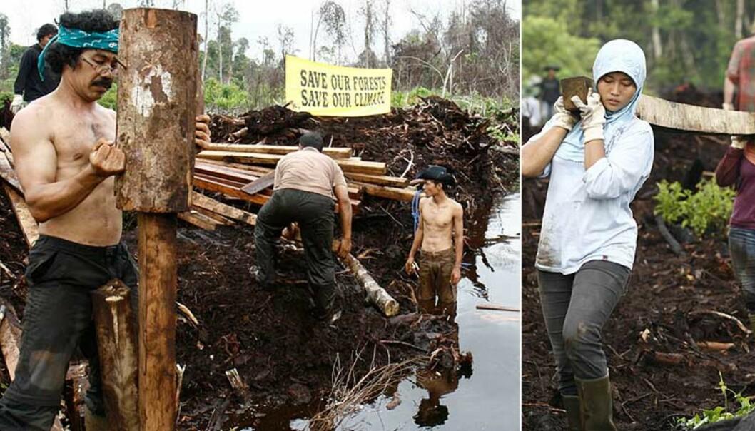<strong><b>STOPPER DRENERING:</strong></b> Aksjonister stopper dreneringen av sumper og regnskog for å stoppe hugging av regnskogen på Sumatra i Indonesia. Foto: GREENPEACE/Oka Budhi