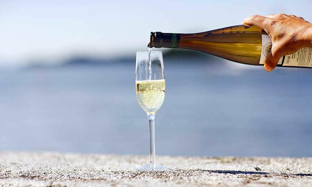 FORFRISKENDE: Spanske og portugisiske viner uten eikepreg er deilig om sommeren. Styr unna billige Amigo, og spander heller noen ekstra kroner. Du får flere sekser-viner til under hundrelappen! Foto: SIV JOHANNE SEGLEM