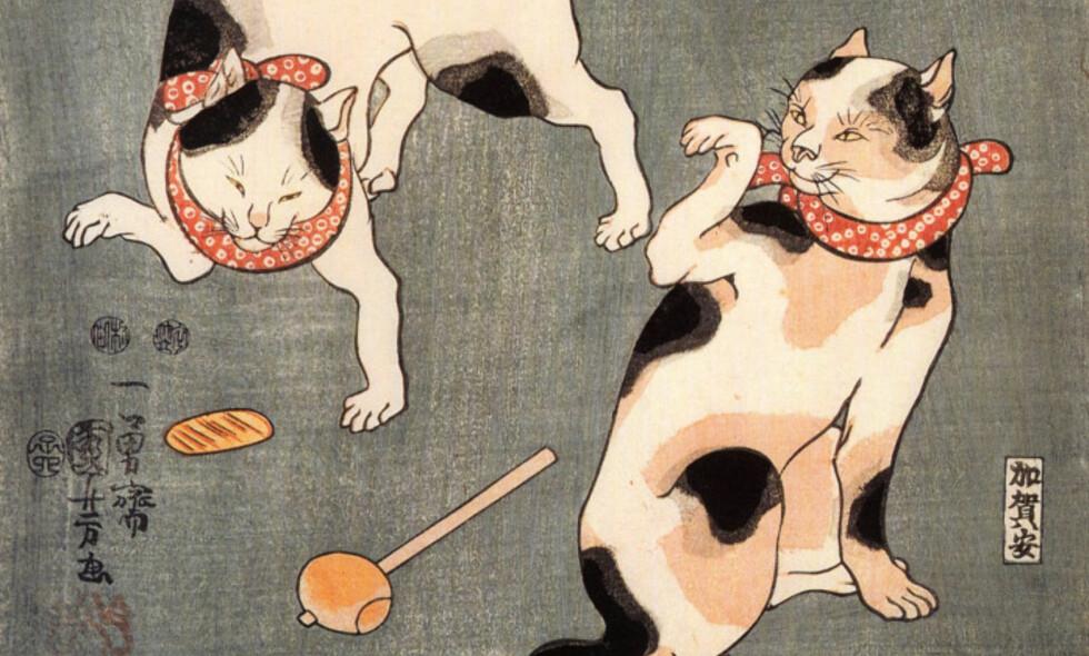 FLOTT DESIGN: Katteboka til Tor Åge Bringsværd er en flott utstyrt kaffebordsbok, med katteillustrasjoner av blant andre Utgawa Kuniyoshi.