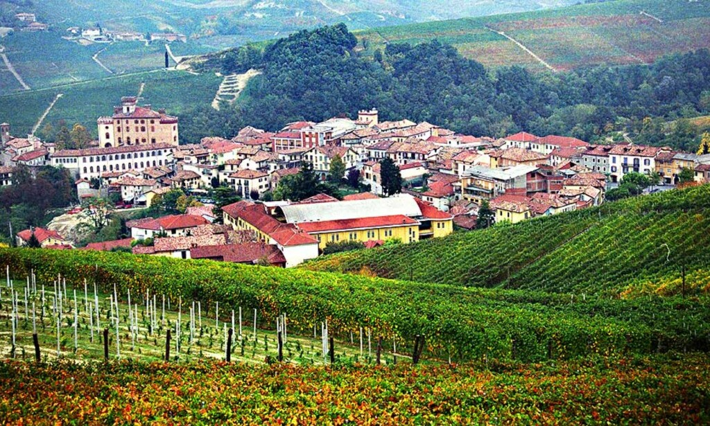 IDYLLISK - OG GODT: Vi fant flere gode viner fra Piemonte-distriktet i det nordlige Italia i Vinmonopolets store september-slipp. Alle foto: NINA HANSEN