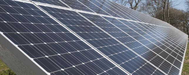REN ENERGI: Ikke-subsidiert solenergi begynner å kunne konkurrere med kull og vindkraft i stadig flere markeder. Foto: NTB Scanpix