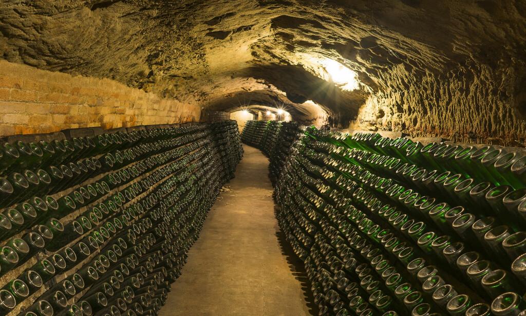 MENGDER MED MUSSERENDE: I cavahovedstaden Sant Sadurní d'Anoia ligger flaskene og godgjør seg i flere hundre år gamle kjellere, som her hos Codorniu. FOTO: TURISME DE SANT SADURNÍ