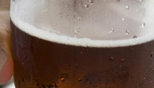 7 ting alle som er glad i øl bør være klar over