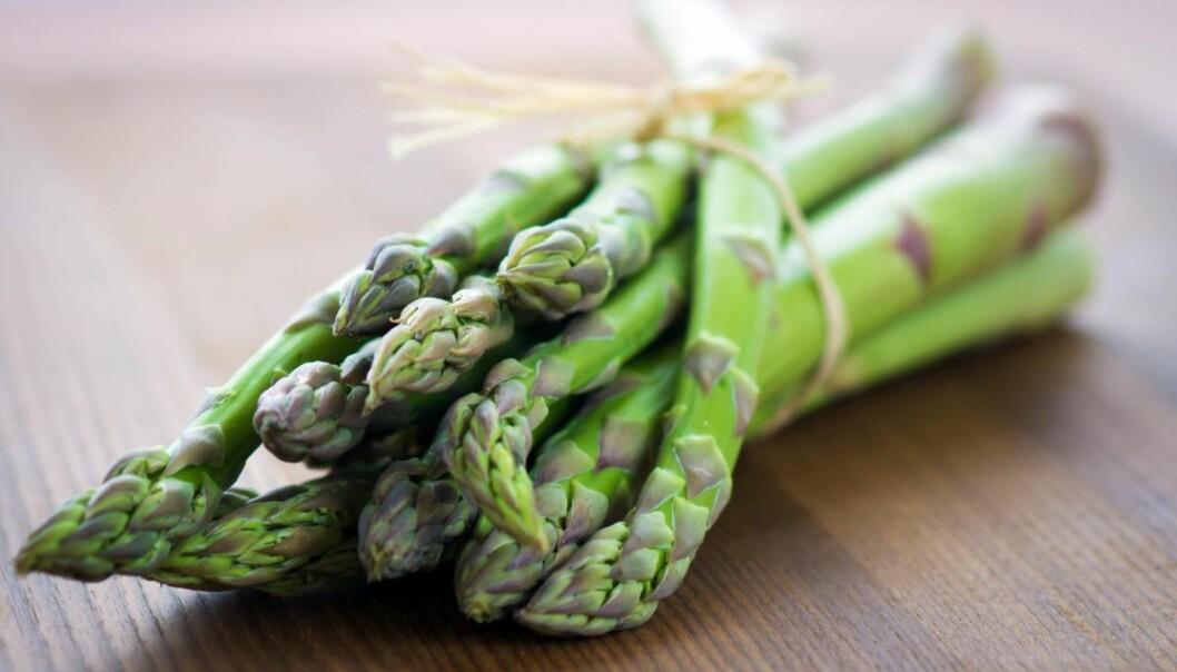 ASPARGES: Asparges er en svært sunn grønnsak, både de hvite og de grønne. FOTO: NTB scanpix