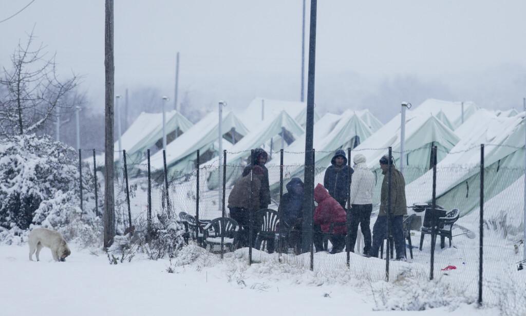 TØFFE FORHOLD: Snø, vind og temperaturer ned mot ti kuldegrader har gjort livet i flyktningeleiren Vagiohori i Hellas svært tungt denne vinteren. Teltene har ikke elektrisitet eller varme, mange har ikke engang senger. Foto: Nicolas Economou/NurPhoto / NTB Scanpix