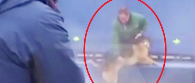 image: Slår tilbake etter hundeskandale:- Videoen forteller ikke hele historien