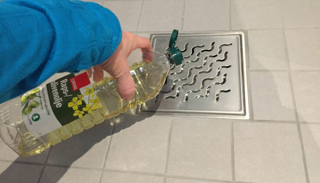 <strong>HELL MATOLJE I SLUKET:</strong> Dette er bare ett av tipsene du kan ta i bruk for å fjerne stanken fra sluket. Foto: Linn M. Rognø