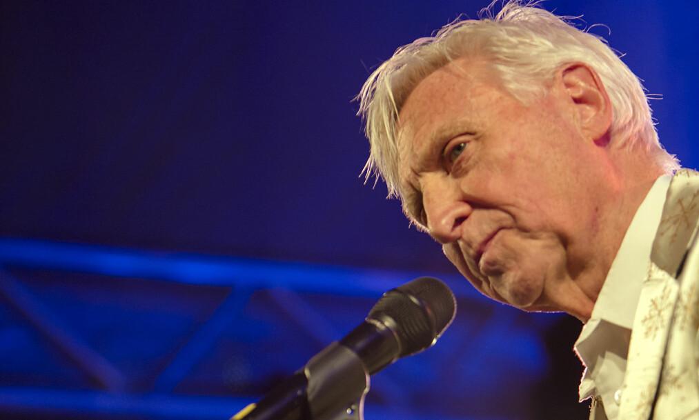 ÅRETS HEDERSPRIS: Arve Tellefsen vant årets hederspris under Spellemannprisen, men da han skulle motta hedersbevisningen var han ikke å finne.  Foto: NTB scanpix